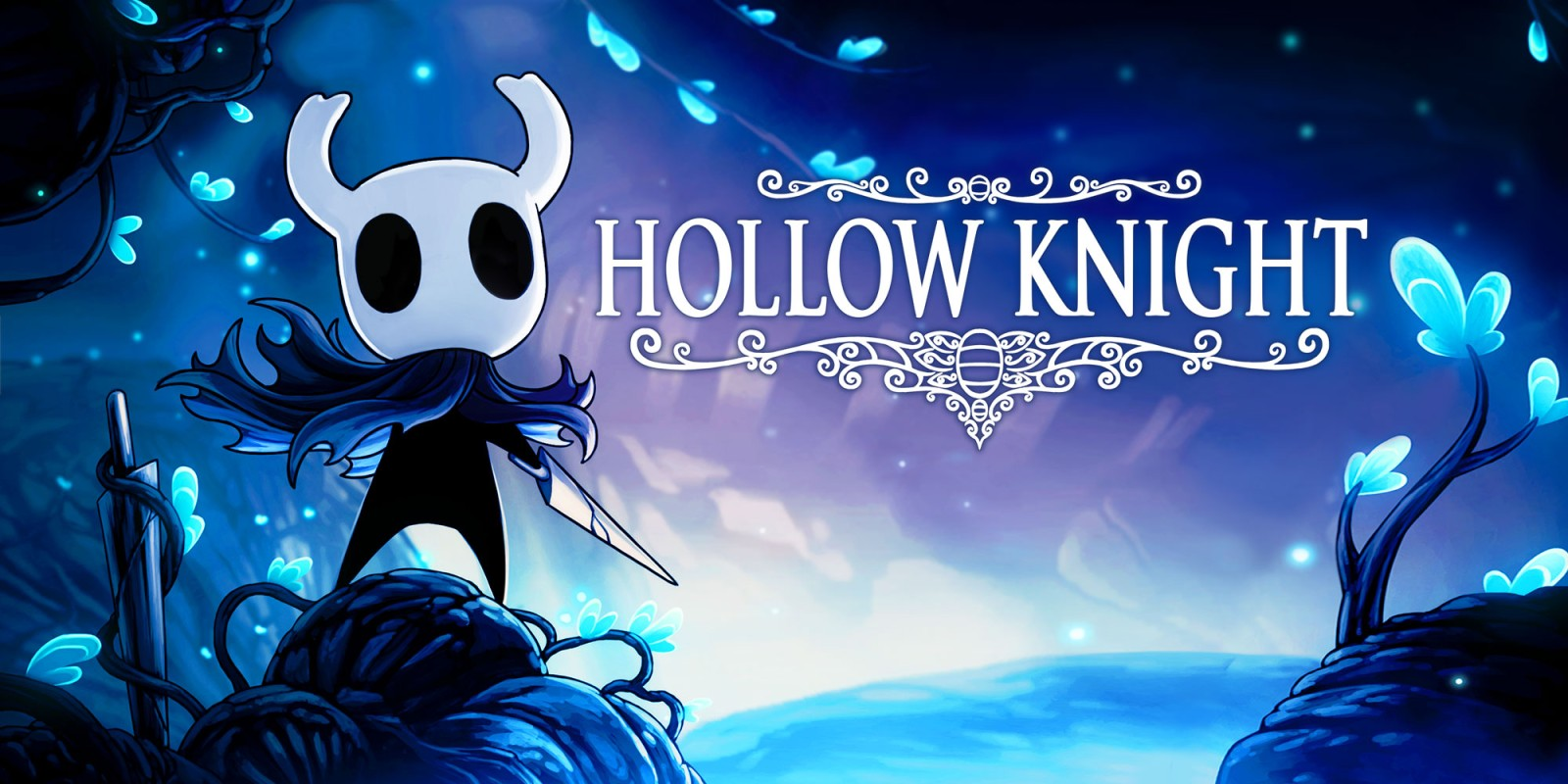 hollowknight1.jpg